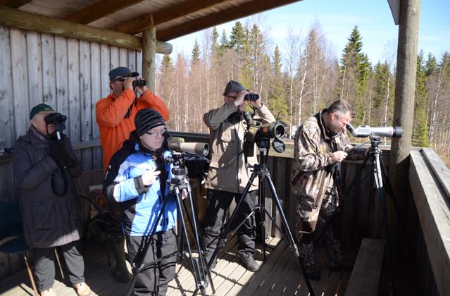 Tornien taiston joukkue Niskanperän tornilla Rovaniemellä.